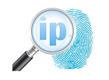 Find your internet IP Address
