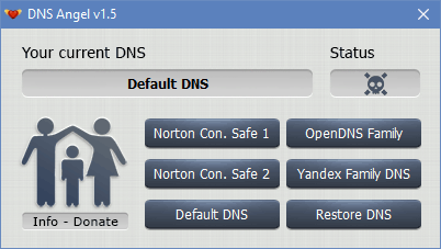 Dns Angel interface
